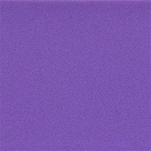 Purple Fitbit Versa/Versa 2