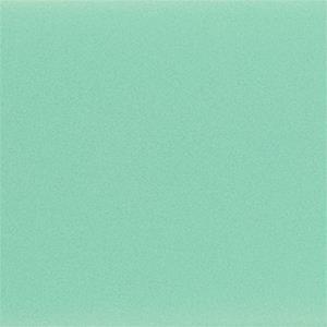 Teal Fitbit Versa/Versa 2