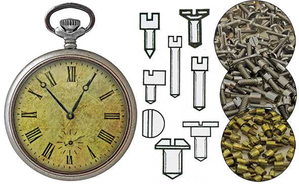 Screws, Pocket Watch Movement