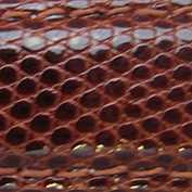 18mm Brown Lizard